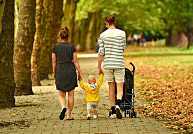 Въпросите днес: Правен режим на влоговете преди и след влизане в сила на Семейния кодекс от 2009год.